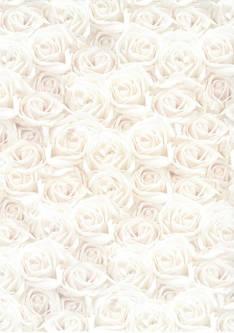 Design kartonki ruusut a4/5 - Askartelutarvikkeet - 146001 - 1
