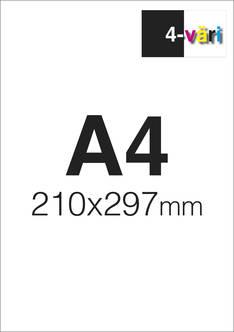 Flyer A4 4/0 - Painetut flyerit - 151561 - 3