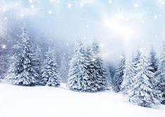 Joulukortti 2-os, Blanco - Postikortit,lahjakortit,adressit - 133841 - 1