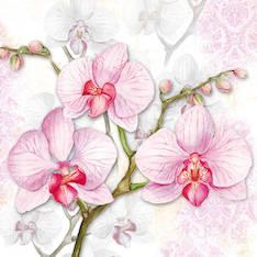 Lautasliina 33x33cm orchids lilac fsc mi - Servietit ja lautasliinat - 143781 - 1