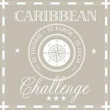 Lautasliina 33x33cm caribbean challenge - Servietit ja lautasliinat - 143798 - 1